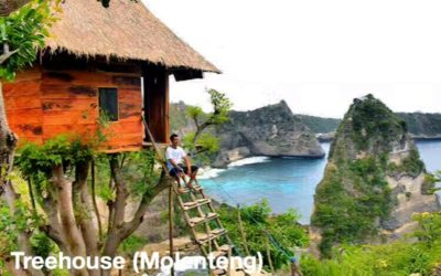 East Penida One Day Package